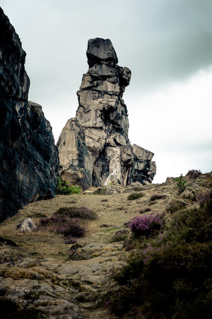 Teufelsmauer, Sachsen-Anhalt, Germany, Harzvorland, band of rocks, Devil's Wall, Weddersleben, Sandstone, Adlersklippen, Eagle Crags