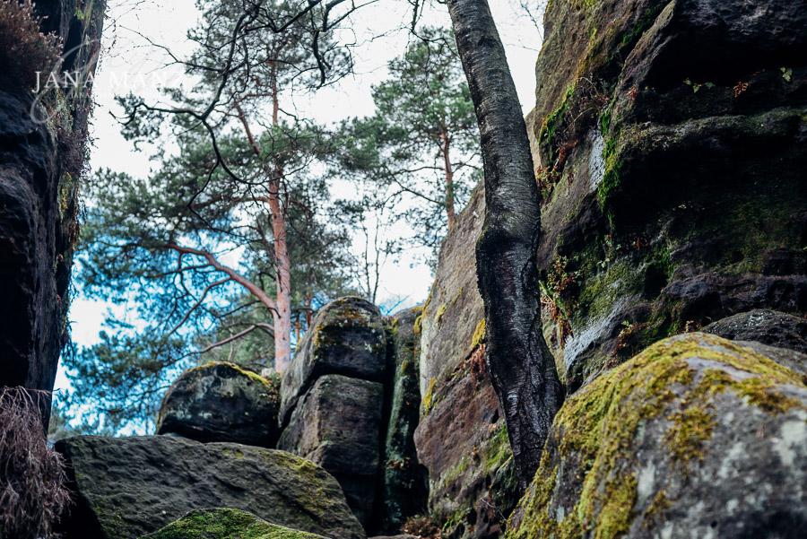 Fotoworkshop Landschaftsfotografie Elbsandsteingebirge Sachsen, Labyrinth Langenhennersdorf